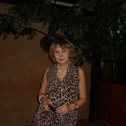 Евгения, 65 лет, Артемовск