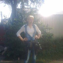 Елена, 44 года, Красилов