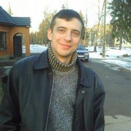 Александр, 33 года, Сергиев Посад-15