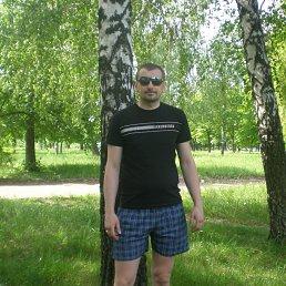 Александр, 41 год, Побужское