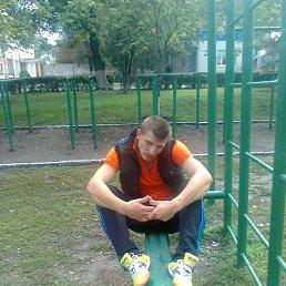 Максим, 28 лет, Ромны