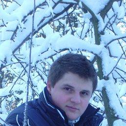 Андрей, 28 лет, Ладыжин