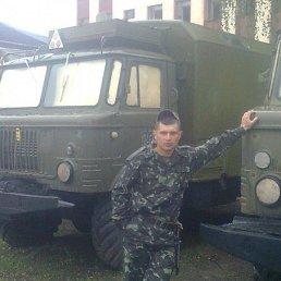 Максим, 29 лет, Малин