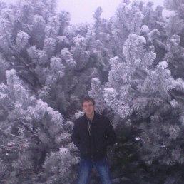 Андрей, 30 лет, Яворов