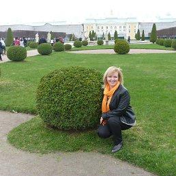 Татьяна, 43 года, Краснознаменск