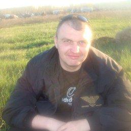 александр, 39 лет, Челны