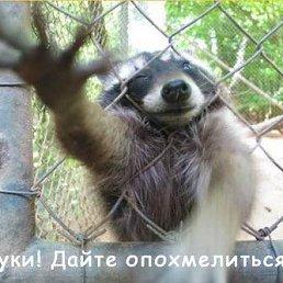 Фото Я Чей То????, Москва, 51 год - добавлено 9 марта 2013