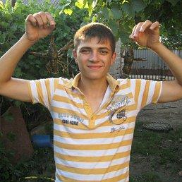 Сашок, 25 лет, Амвросиевка