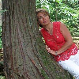 Ольга, 51 год, Воронеж