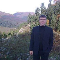 Артурка, 39 лет, Краснодар