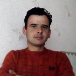 Сергей, 45 лет, Кодыма