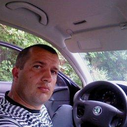 олег, 37 лет, Софиевка
