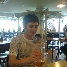 Шурик, 29 лет, Сквира