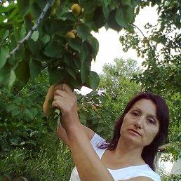 ЛЮДА, 54 года, Богуслав