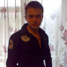 Алексей, 29 лет, Броды