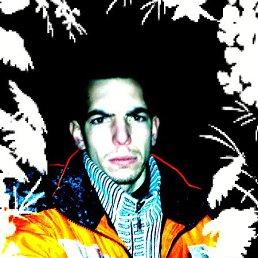 Василий, 28 лет, Новая Ладога
