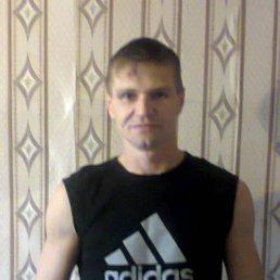 Сергей, 41 год, Нижние Вязовые