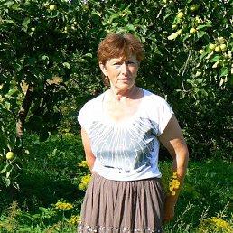 Раиса, 66 лет, Струги Красные