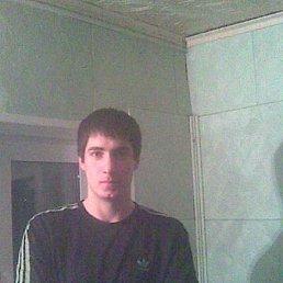 дима, 31 год, Тюмень