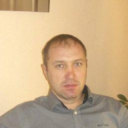 Андрей, 44 года, Дергачи