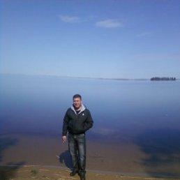 Сергей, 36 лет, Вичуга Старая
