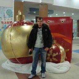 Алексей, 28 лет, Щекино