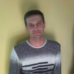 Михаил, 46 лет, Мелитополь