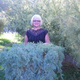 Ирина, 66 лет, Доброполье