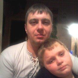 сергей, 43 года, Белый
