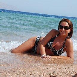 Наталья Журкова, 38 лет, Бронницы