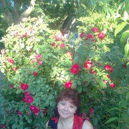 Ольга, 45 лет, Вишневое