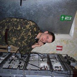 Vova, 29 лет, Коломыя