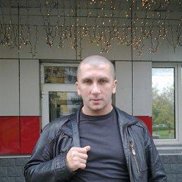 Максим Ситников, 50 лет, Москва