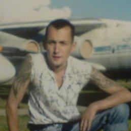 Андрей Волин, 36 лет, Иваново