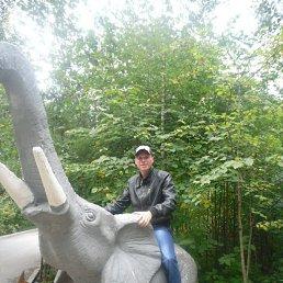 Михаил, 28 лет, Краснозерское