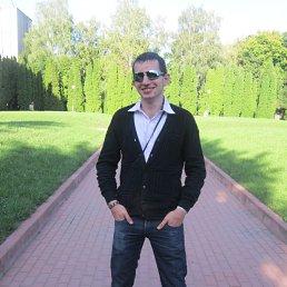 Николай, 29 лет, Курск