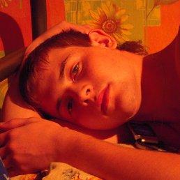 Алексей, 29 лет, Дорогобуж