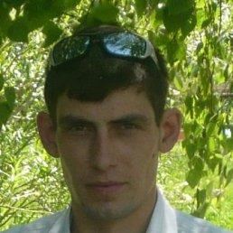 Александр, 40 лет, Шипуново