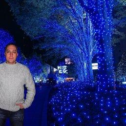 Сергей Шилов, 43 года, Софрино
