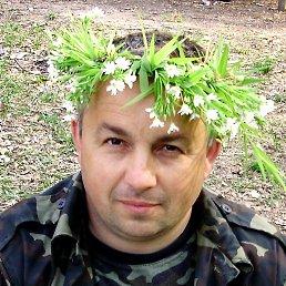 Андрей, 52 года, Ичня