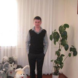 Тарас, 31 год, Козова