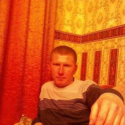 Алексей, 32 года, Вавож