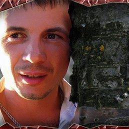 Дмитрий, 39 лет, Володарка