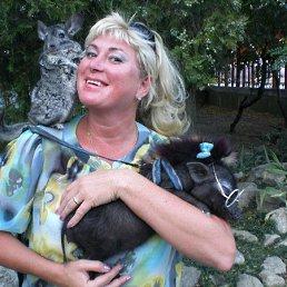 Денисова Елена, 50 лет, Томилино