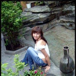 Дарья, 28 лет, Владимир