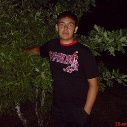 Дмитрий, 28 лет, Кирсанов