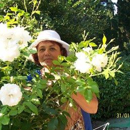 Валентина, 56 лет, Димитров