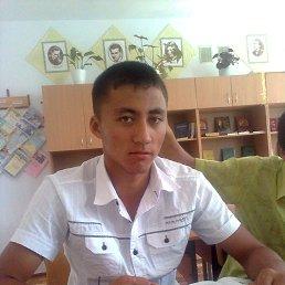 Радислав, 24 года, Килия