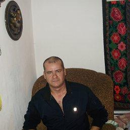 Петр, 44 года, Поспелиха