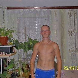 Александр, 28 лет, Первомайск